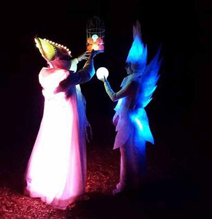 Lumina viziunii Un performance poetic, de basm, bazat pe muzică, lumină și coregrafie.
