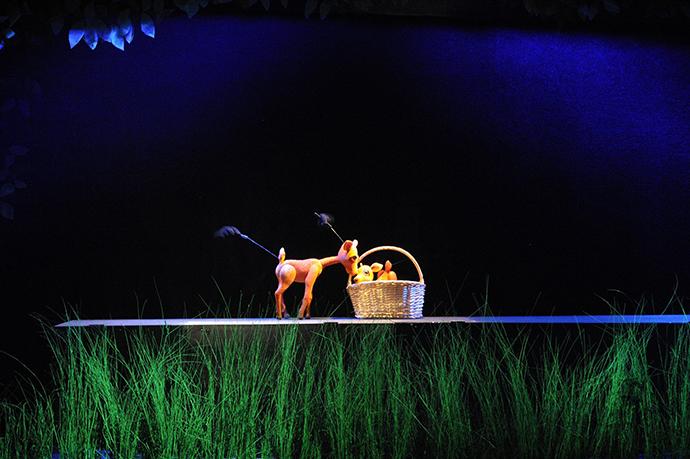 Povestea unui căprior (Teatrul Tineretului Tbilisi Georgia)