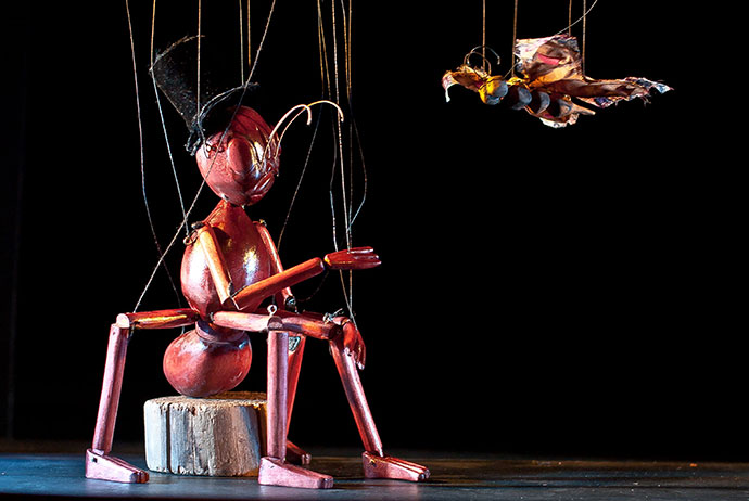 String Theatre Marea Britanie CIRCUL INSECTELOR THE INSECT CIRCUS